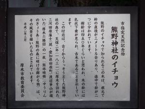 Ichou01